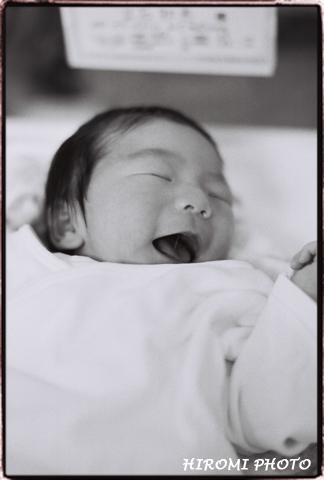 産まれたばかりの赤ちゃん1