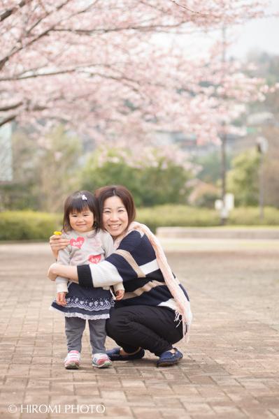 桜フォト_246s