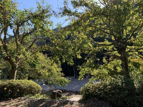 湯河原幕山公園