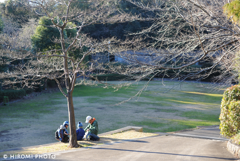 桜が楽しみな公園