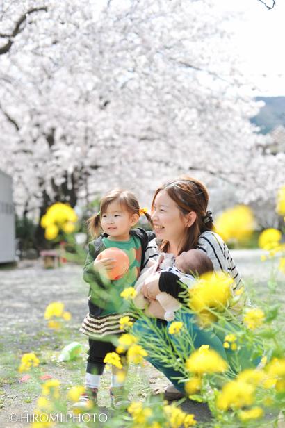 桜ロケーションフォト_091s