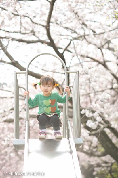 桜ロケーションフォト_187s