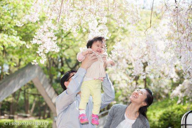 桜ロケーションフォト_754s