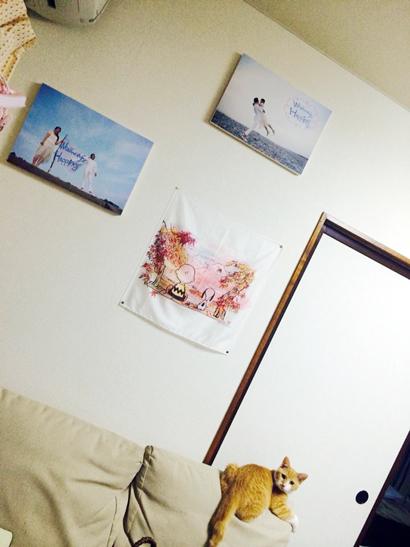 photopanel_a