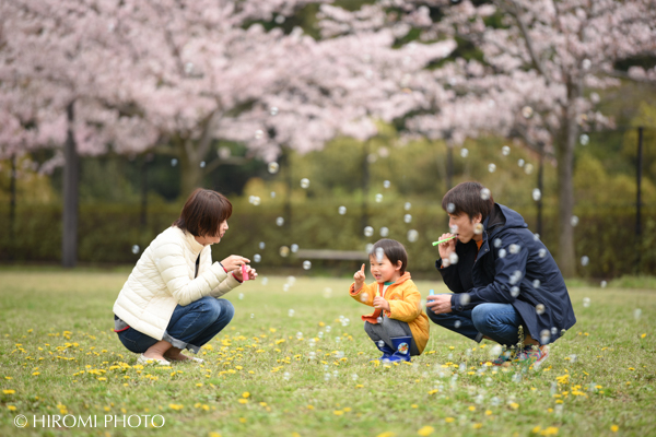 桜フォト2017-0019s
