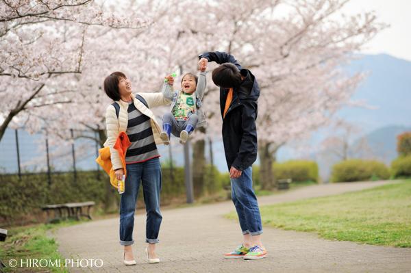桜フォト2017-0101s