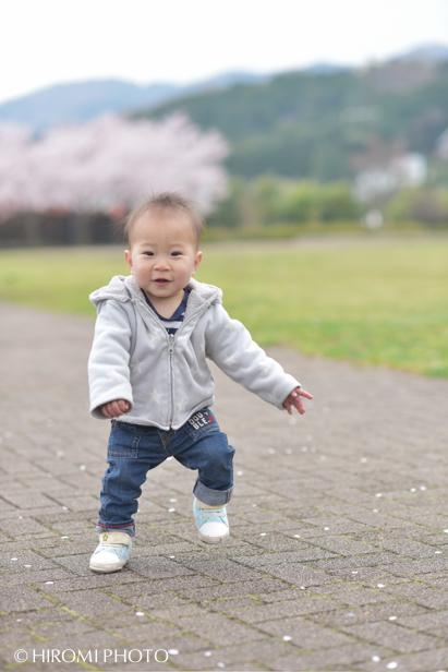 桜フォト_051s
