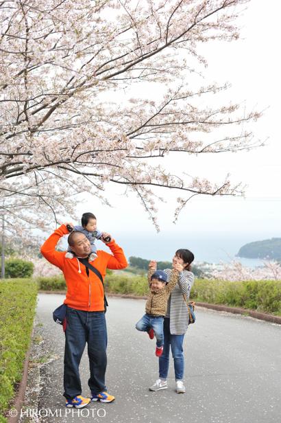 桜フォト_1393s