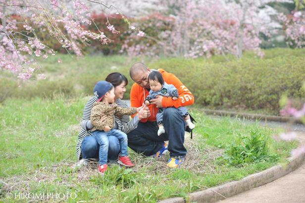 桜フォト_1411s