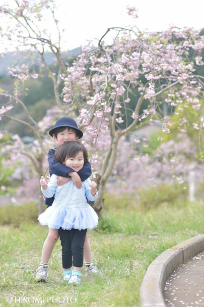 桜フォト_1459s