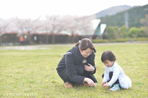 桜フォト_1497s