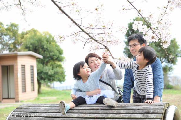 桜フォト_1543s