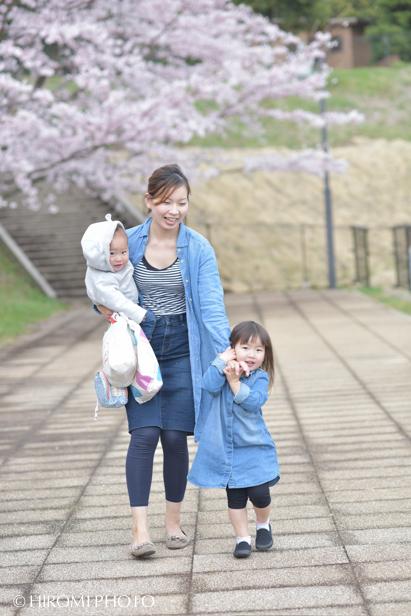 桜フォト_181s