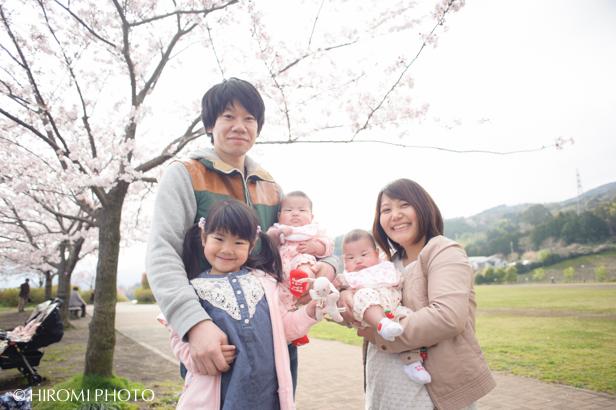 桜フォト_262s