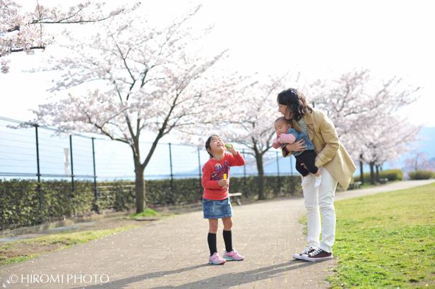 桜フォト_591s