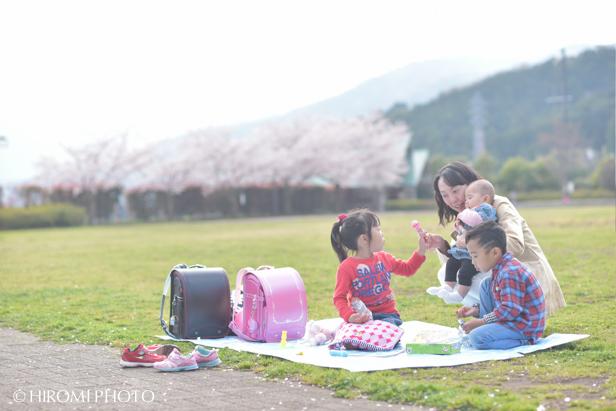 桜フォト_675s