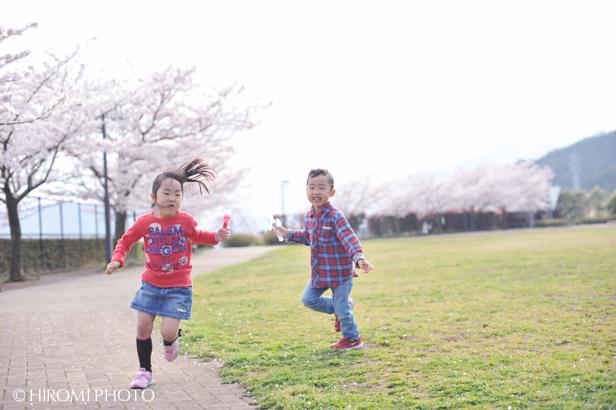 桜フォト_691s