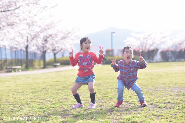 桜フォト_773s